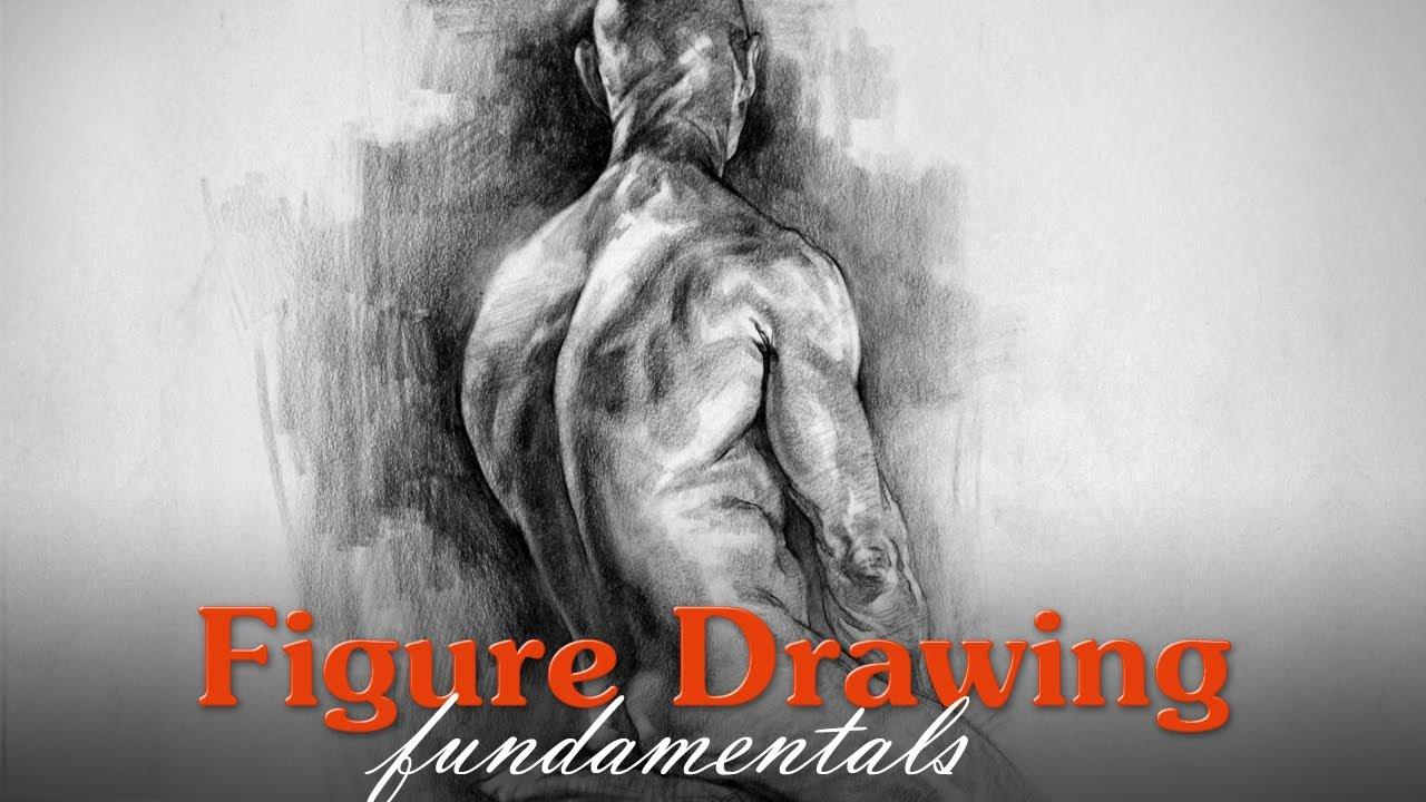Figure drawing fundamentals Proko