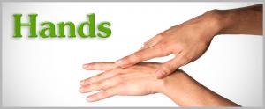 Hands - Proko